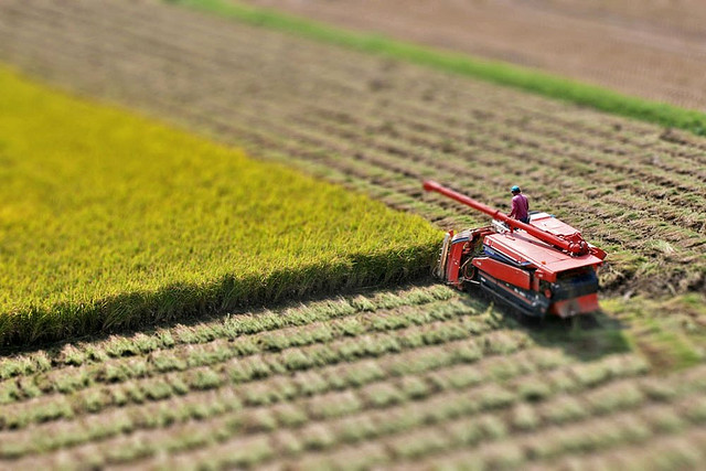 Plowing Land tilt Shift Photography