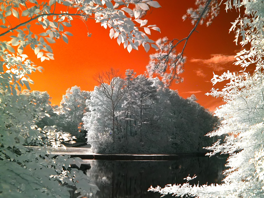 An infrared shot of Barrett Lake without channel swapping
