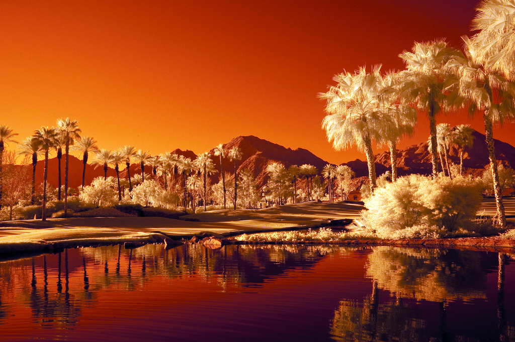 An infrared shot of Palm Springs
