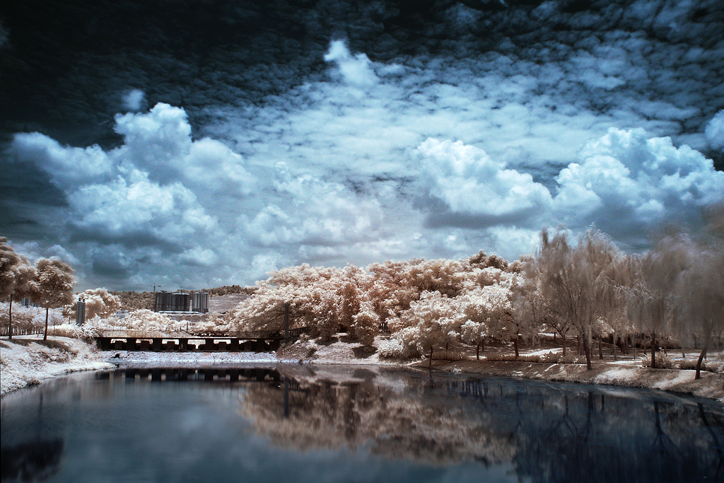 This IR photograph taken using Hoya IR R72 Filter with Focal Length: 18mm and Aperture: f22