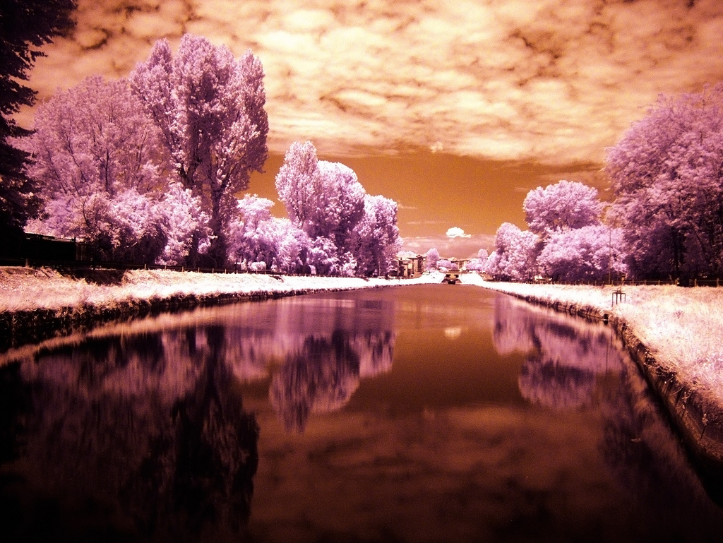 IR Pavese Infrared photography