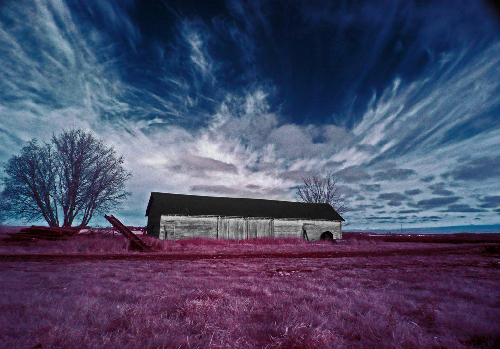 Infrared Photography - taken with infrared filter, suntec ir72